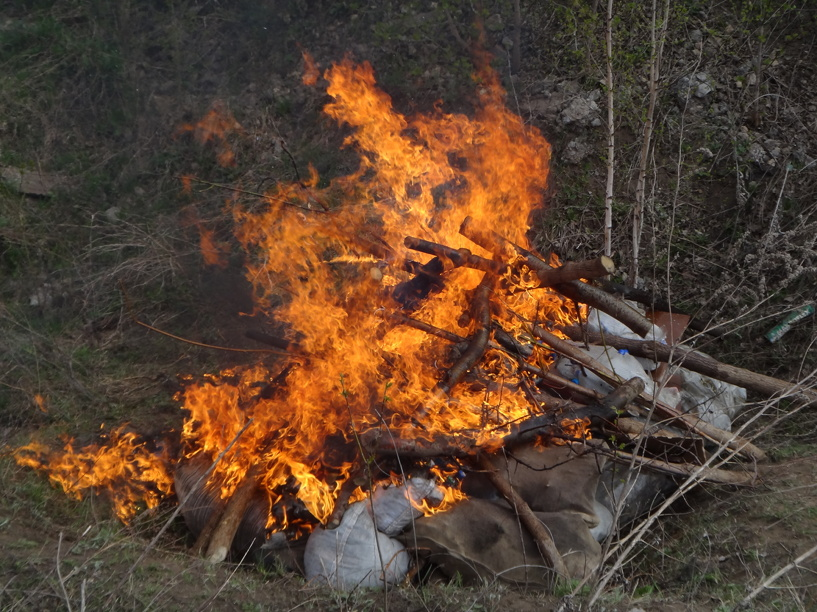 В Тамбовской области заживо сгорел рабочий