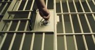Тамбовчан, избивших ДПСника, посадят в тюрьму