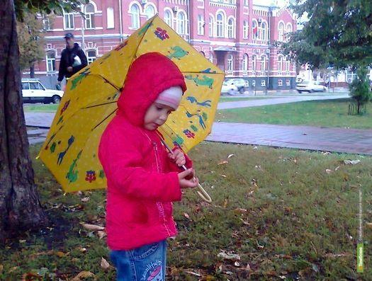 Ближайшая неделя в Тамбове будет тёплой и влажной