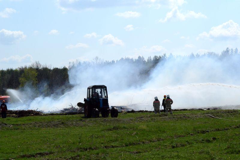 Благодаря регулярному патрулированию удалось ликвидировать свыше 50 лесных пожаров
