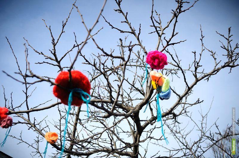 Рассказовские мастерицы украсили город вязаными цветами