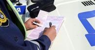 Тамбовские автоинспекторы проконтролируют, пропускают ли водители пешеходов на дорогах