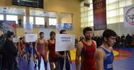 В Тамбов съедутся сильнейшие борцы со всей России