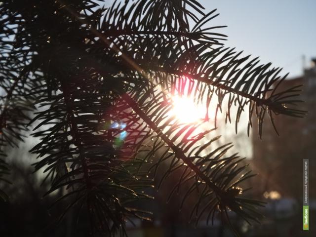 Тамбовчан ждет морозная бесснежная погода