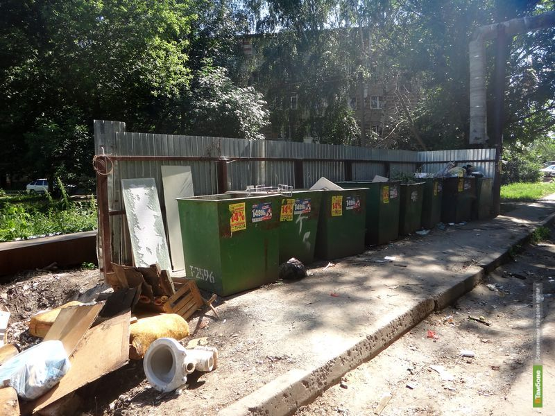 Прокуратура обязала тамбовские власти передвинуть мусорные баки