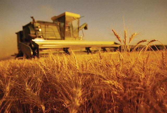 743 миллиона рублей выделят области на поддержку сельского хозяйства