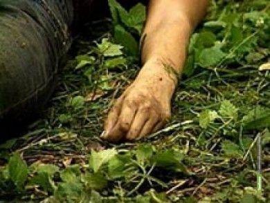 В Тамбовской области грибники нашли труп в лесосполосе