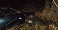 Пьяный автомобилист попал в ДТП в Рассказово