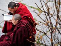 Тибетский монах поджег себя за что и был бит полицией