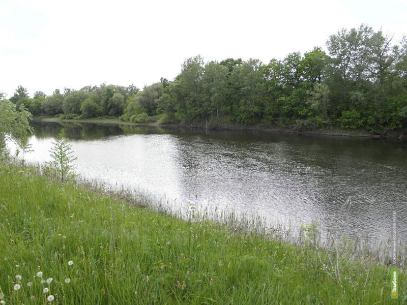В Тамбовской области составили «Летопись природы»
