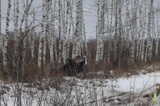 На тамбовской дороге насмерть разбился житель соседней области