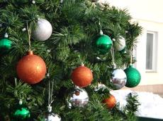 В Тамбове развернутся Рождественские гуляния