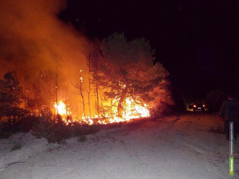С начала года во время пожаров погибли 70 тамбовчан