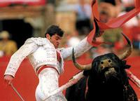 Испанское телевидение вновь покажет корриду