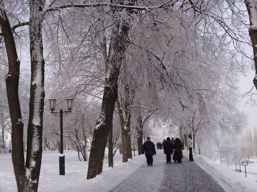 Выходные в Тамбове будут морозными