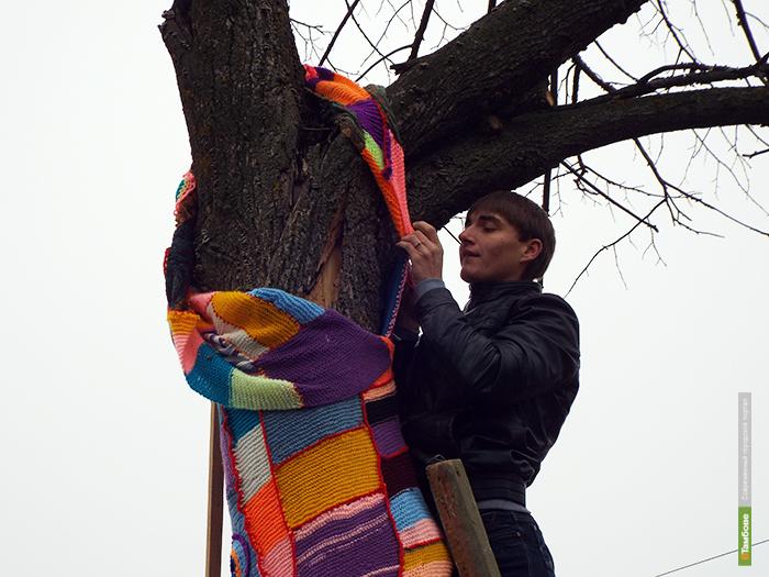 В Рассказово дерево нарядили в вязаный костюм