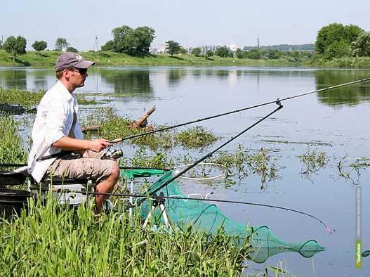 В Инжавинском районе обустроят места для экотуризма