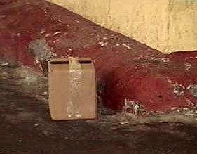 Картонная коробка угрожала тамбовскому автовокзалу