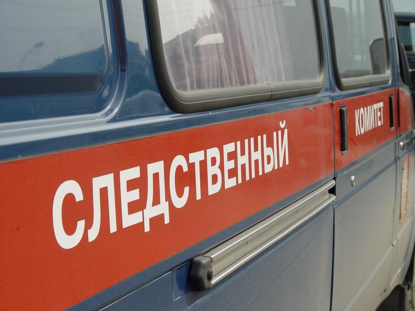 Жителя Никифоровского района обвиняют в убийстве