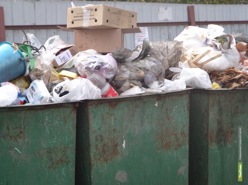 Вопрос о строительстве нового мусорного полигона пока остается нерешенным