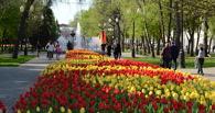 Тамбов поднялся в рейтинге самых привлекательных городов России