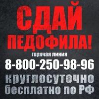 Помощница Павла Астахова запустила горячую линию по отлову педофилов