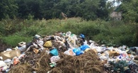 В Мичуринске очистили от мусора берега реки Лесной Воронеж