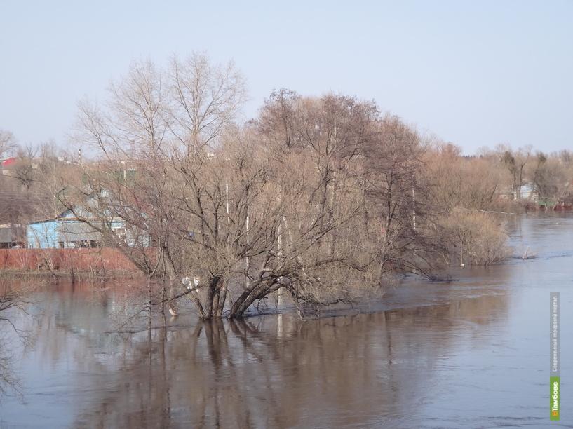 Уровень воды в реках Тамбовской области идет на спад
