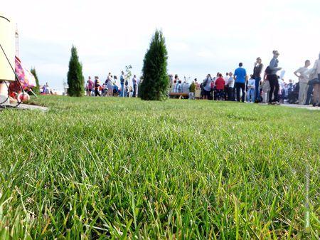 Будущий парк на севере Тамбова сократили в размерах