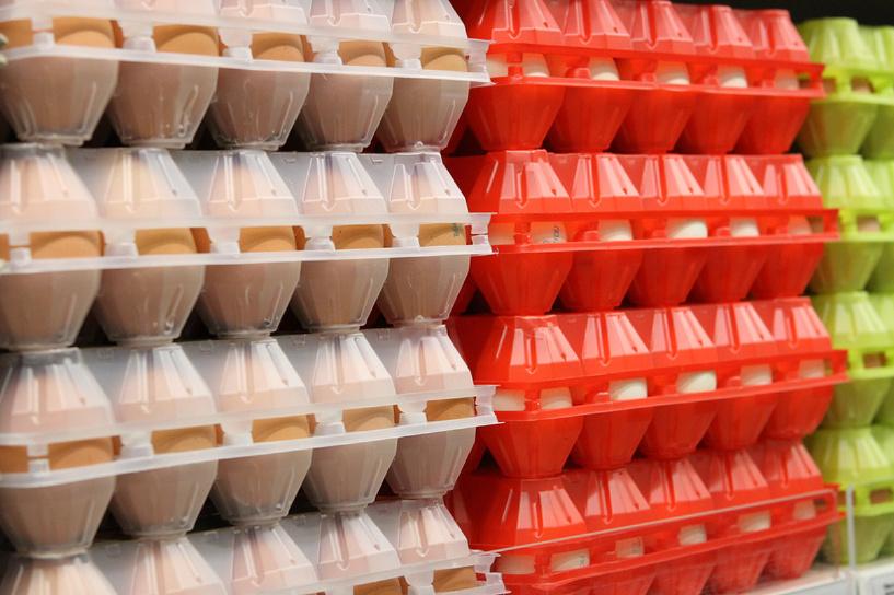 Роспотребнадзор пугает россиян немецкими яйцами