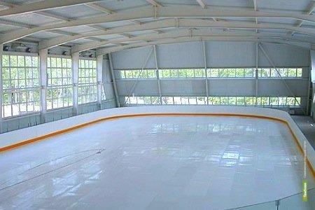 Мичуринцы через год откроют новую ледовую арену