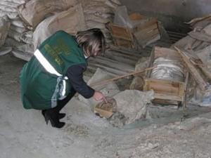 На Тамбовщине на заброшенном предприятии хранилось более 30 тонн пестицидов