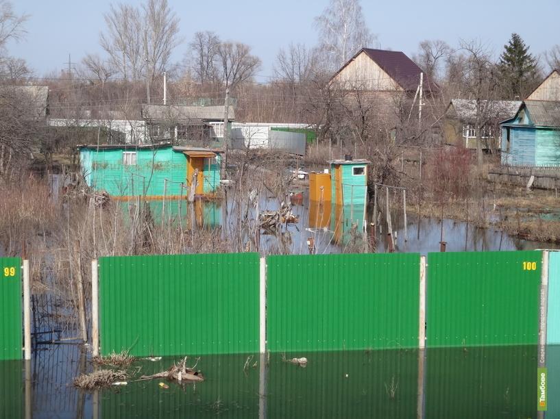 Весенний паводок на Тамбовщине «смыл» почти 30 миллионов рублей