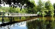 Чистить реки Тамбовщины будут с помощью специальных водорослей