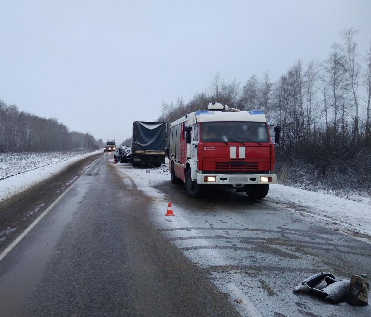 Под Тамбовом шофёр иномарки умер при столкновении с грузовым автомобилем
