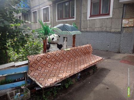 В конце лета тамбовчане кинулись украшать свои дворы