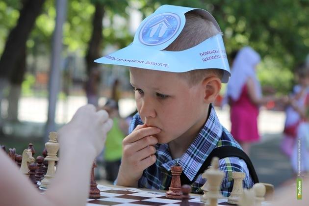 Во дворах Тамбова могут появиться «шахматные» столики