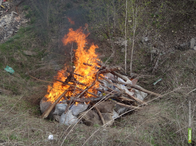 Тамбовские наркополицейские сожгли 400 килограммов наркотиков