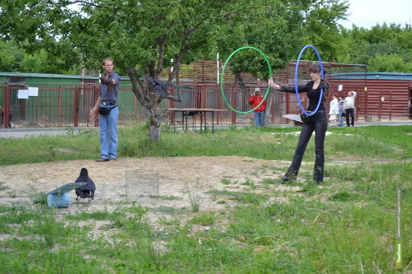 Державинский зоопарк сегодня празднует 6-летие