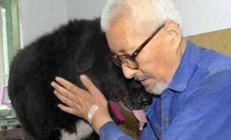 В Китае мужчина оставил все свое состояние собаке