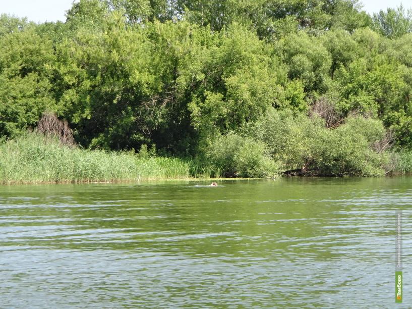 В Мичуринском районе утонул 47-летний мужчина