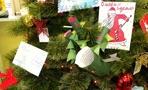 В Тамбове стартовала акция «Дерево добра»