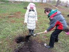 На Тамбовщине начались мероприятия по защите леса