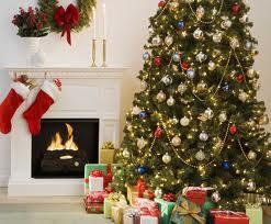 Житель Британии женится на рождественской елке