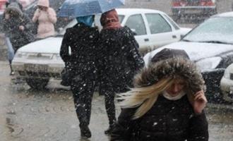 Специалисты прогнозируют сильный ветер и морось в Тамбовской области