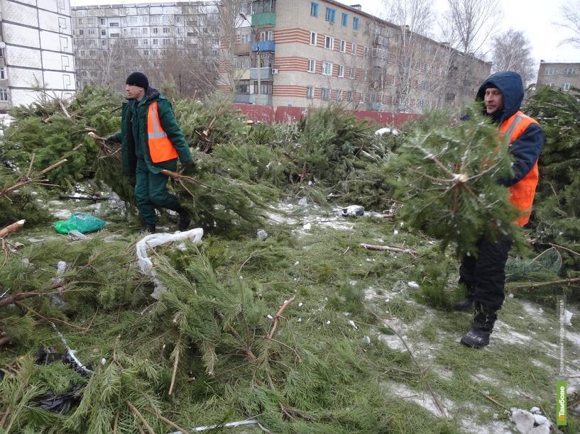 В Тамбове новогодние елки пустили на щепки