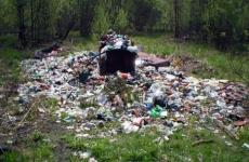 Инжавинская птицефабрика отравляла почву биологическими отходами