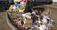 На севере Тамбова развели антисанитарию рядом с детским садом