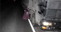 В Рассказовском районе грузовик насмерть сбил пешехода