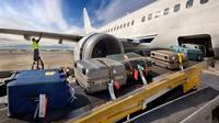 Минтранс отменит бесплатную авиаперевозку любого багажа